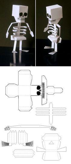 Build your own 3D skeleton model.