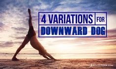 Doggie Styles: 4 variations for downward-facing dog pose!