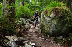 Mountain Biking Squamish: Mt. Seymour, Bridle Path and Sticks and Stones