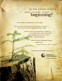 Sample from Renewable Forestry Integrated Campaign
