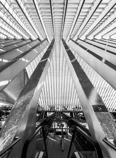 liege-guillemins-tgv-railway-station-in-belgium-designed--by-the-architect-Santiago-Calatrava_black-and-white-(2)