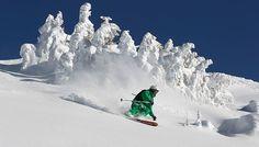 Skidåkning Schladming Puder Snow winter skiing STS Alpresor