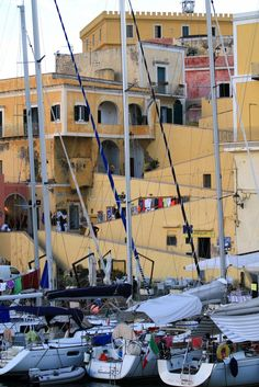 Ventotene Lazio Italy