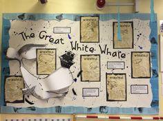 Moby Dick inspired display KS1 Literacy