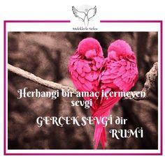 Gerçek sevgi...