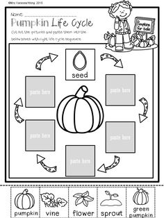 Download free printables at preview. Pumpkin life cycle. Fall Math and Literacy No Prep - Kindergarten. An excellent pack with a lot of sight word, CVC spelling, vocabulary, word work, reading, fluency and other literacy activities and practice