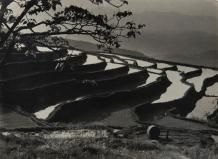 """Vente - Millon 24 juin 2016 Lot 221, Estimation: 800 - 1 000 €, LANG Jingshan, CHIN-SAN LONG (1892-1995), """"Terraces"""", c. 1950, Tirage argentique d'époque sur papier cartoline mat, légende, crédit de l'auteur et numéro """"6"""", """"89/4"""" et """"10/6"""" manuscrits au crayon, traces de montage d'époque au dos, 1950, 20,7 x 28,1 cm Crayon, Montage, Photos, June 24, Photography, Paper, Pictures"""