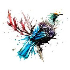 Tui - Limited Edition Print on HQ Cotton Textured paper Watercolor Animals, Watercolor And Ink, Watercolor Paintings, Original Paintings, Watercolour Tattoos, Watercolours, Tui Bird, Nz Art, Maori Art