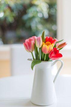 Tulips. Image via: https://flickr.com/photos/aupetitgout