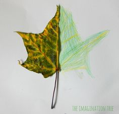Make some beautiful mirror leaf drawings as an Autumn art activity for kids! Great for practising observational drawing skills and learning about nature Symmetry Activities, Drawing Activities, Art Therapy Activities, Forest School Activities, Autumn Activities For Kids, Camping Activities, Preschool Activities, Drawing For Kids, Art For Kids