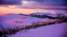 Snow Australia - Falls Creek sunset #snowaus
