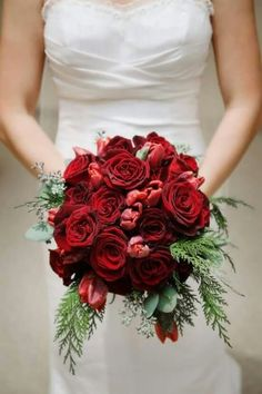 simple velvety holiday wedding bouquet, roses, tulips, spruce and eucalyptus
