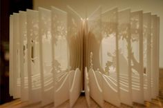 El libro como arte-objeto de su propia historia @fubiz http://www.fubiz.net/2012/10/22/360-book/