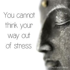 Try as we might... it just doesn't work! ♥ You can't really 'stop thinking' either.... but you can calm down an agitated mind with simple, lovely Ayurvedic diet, lifestyle and mindfulness practices xx http://www.muditainstitute.com/