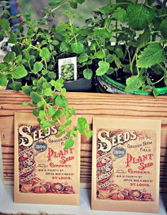 Rustic Garden Party - LSE www.styleinspirationanddesign.com Vintage Seed Packet Favors