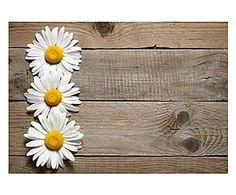 Tappetino antiscivolo in poliestere Daisy - 52x75 cm