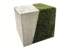 Stone plant sculpture from Udo Dagenbach in United World College in Dilijan , Armenia winning the German Design Award 2018. It is around 1,2 m cube consisting from limestone and yew plant. A maximum minimalistic garden.