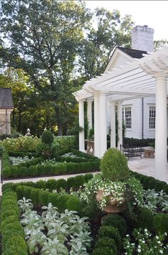 , Creative Traditional Landscape Design Gorgeous Front Garden Design With Lovely Green Garden Plant With Unique Layout Also White Pergola And Pillars: Impressing the Passerby with Stunning Front Garden Design Formal Gardens, Outdoor Gardens, Boxwood Garden, Herb Garden, Vegetable Garden, Box Garden, Boxwood Hedge, Potager Garden, Easy Garden