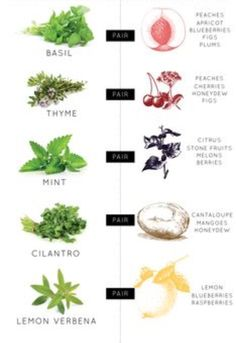 Love using herbs to make simple syrup and experiment with fruit!