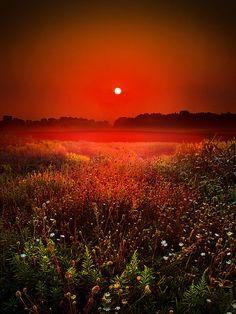 Morning Glow  by Phil~Koch
