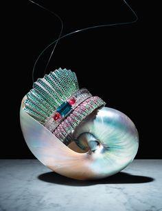 Arm Candy - Shells, Dior Fine Jewelry bracelet