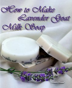 LAVENDER SOAP.EASY.COLD PRESS.How to make lavender goats milk soap. Make it in the microwave. Easy homemade gift!