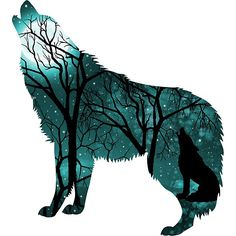 Howling Wild Wold - Turquoise