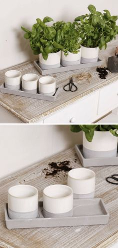 Gorgeous concrete and ceramic flower pots. Ideal for a potting shed or contemporary interior! These trios of planter pots feature unusual stone and cream two-tone color schemes & display trays. #ad #concrete #ceramic #pot #planter #flowerpot #cement #homedecor