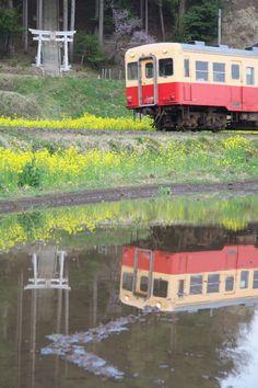 Japanese Local Train (Chiba, Japan)|小湊鉄道