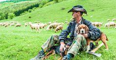 Stary pastier- old shepherd Slovakia