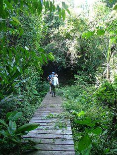 Into the Indio Maiz Biological Reserve, Nicaragua