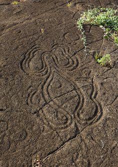 "Petroglyph In Paka Vaka Rock Art Site, Easter Island, Chile    Symbols have been found on a number of stones on Easter Island, several thousands of petroglyphs can be found, most of them represent animals, like the legendary ""bird man""."
