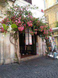 Piazza Madonna dei Monti, Kiosk, Amazing Flowers