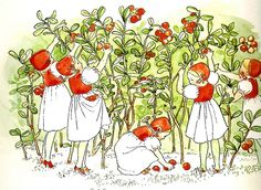 Most popular tags for this image include: vintage, children, Elsa Beskow, garden Elsa Beskow, Vintage Book Art, Flower Fairies, Fairy Art, Children's Book Illustration, Vintage Children, Illustrators, Fairy Tales, Berries