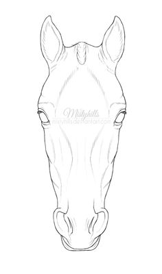 Horse Head Lineart by Mistyhills ...