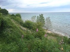 Photo 2 : Lot 0 County Rd LS, Cleveland, WI 53015, US