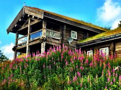 Eksklusiv fritidsbolig i hjertet av Norefjell   FINN.no