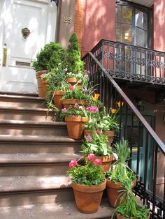 Greenwich Village.  Rent-Direct.com - Rent a No Fee Apartment in NYC.