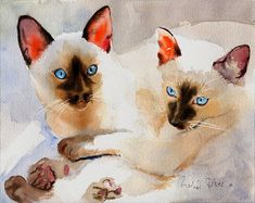 Siamese Cat art  PRINT  Watercolor Painting door rachelsstudio