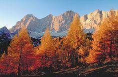 Dachstein Mount Everest, Mountains, Nature, Painting, Travel, Horseback Riding, Naturaleza, Viajes, Painting Art