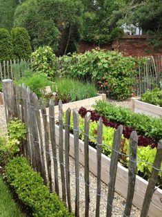 rustic fence + boxwood hedge
