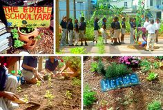 The Edible Schoolyard Funded by the Chez Panisse Foundation by Alice Waters