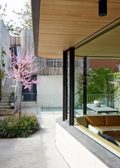 The home of Melbourne architect Clare Cousins and family. View from living room to rear garage and studio. The tree is an Eastern Red Bud (Cercis Canadensis). Photo - Sean Fennessy, production – Lucy Feagins / The Design Files. Garden Architecture, Residential Architecture, Architecture Details, Pavilion Architecture, Australian Architecture, Australian Homes, Exterior Design, Interior And Exterior, Clare Cousins