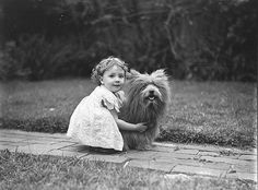 Or Toto Brought Home A Munchkin.