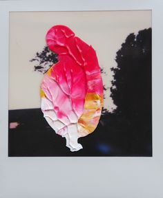 Overpainted photograph - tree