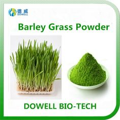 Barley Grass Powder - Dowell Bio-Tech focus on producing 100% pure natural fruit and vegetable powders by the advanced manufacturering technology. All the raw materials comply with organic standards, contains variety of vitamins and acids; With pure flavor, good taste, super water solubility, can be widely used in pharmaceutical and health care products, health food, infant food, beverage, dairy products, sport drinks and other fields.