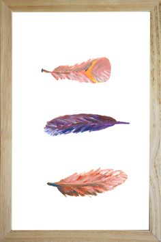 swirling feathers illustration in frame catchii home styling painting