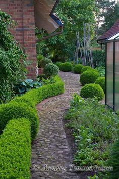 La Belle Jardin: Buchsbaum