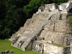 belize caracol maya mayan ruins Maya Architecture, Where Do I Go, Belize City, Mayan Ruins, Tour Operator, Archaeological Site, Places To Go, Tours, Belize