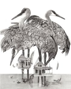 Sandhill Cranes Birdhouse, Pencil drawing, graphite drawing, nature, birds, black and white, art, illustration, lake house, swimming